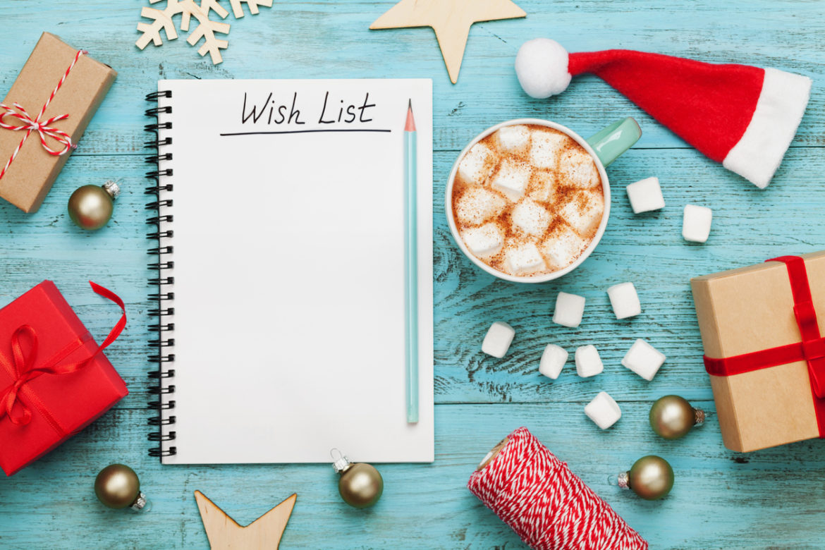 The Best Holiday Wellness Gifts!